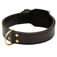 Training 2 Ply Leather Mastiff Collar