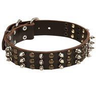 Mastiff Spikes and Studs Rows Leather Dog Collar