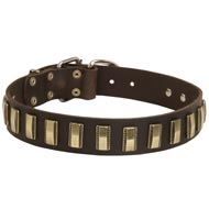 Leather Mastiff Collar with Awesome Brass Plates