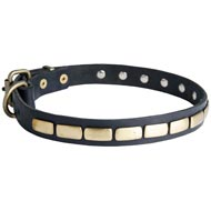 Mastiff Leather Collar Brass Plates 25 mm
