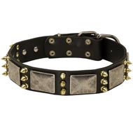 Mastiff Spiked Leather Collar with Nickel Plates