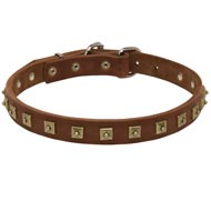 Handcrafted 1 Row Square Studded Leather Mastiff Collar