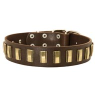 Mastiff Leather Collar with Shiny Plates