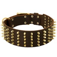 Wide Spiked Leather Mastiff Collar