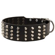 Extra Wide 4 Rows Studded Leather Mastiff Collar