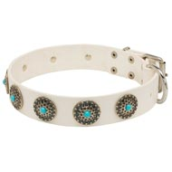 Exclusive White Leather Mastiff Collar with blue stones