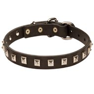 Mastiff Leather Collar Caterpillar Design