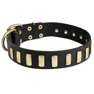 Fancy Leather Mastiff Collar with Brass Plates