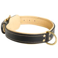Padded Leather Mastiff Collar