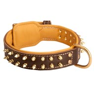 Spiked Mastiff Collar Padded with Nappa Leather
