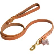 Walking and Training Leather Mastiff Leash with Comfy Handle