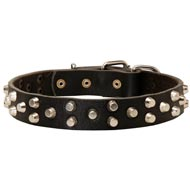 Fancy Design Leather Mastiff Collar with Nickel Pyramids