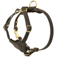 Strong Leather Mastiff Harness With Small Chest Plate
