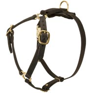 Y-Shaped Leather Mastiff Harness for Tracking and Training