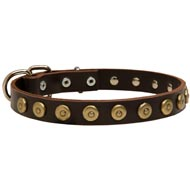 Leather Mastiff Collar with Brass Dotted Circles for Fashion Walking