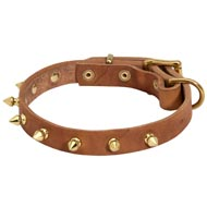 Walking Designer Leather Mastiff Collar with Brass Spikes