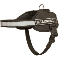 Nylon Mastiff Harness with Reflective Strap for Training, Walking, Police Service, SAR and More