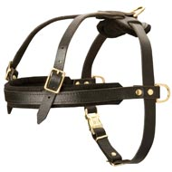 Leather Mastiff Harness for Tracking and Pulling