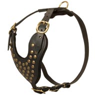 Adjustable Studded Leather Mastiff Harness for Fashion Walking