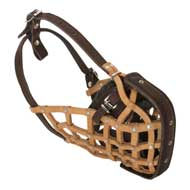 Basket-Like Mastiff Muzzle Leather