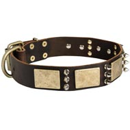 Designer War-Style Leather Mastiff Collar with Spikes and Plates
