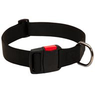 Any-Weather Nylon Mastiff Collar With Quick Release Buckle for Training and Walking