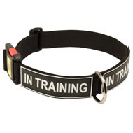 All Weather Nylon Mastiff Collar with ID Patches