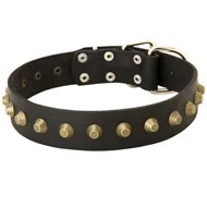 Leather Mastiff Collar with Brass Pyramids