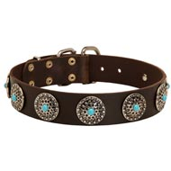Leather Mastiff Collar with Blue Stones for Stylish Walking
