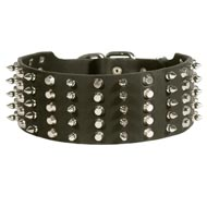 Mastiff Leather Collar Spiked and Studded