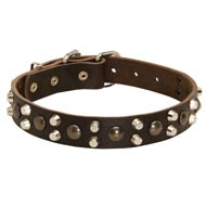 Leather Mastiff Collar With Studs and Pyramids