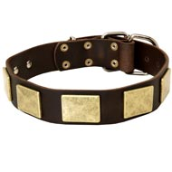 Handcrafted Leather Mastiff Collar With Vintage Massive Plates