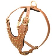 Brass Spiked Leather Mastiff Harness for Fashion Walking