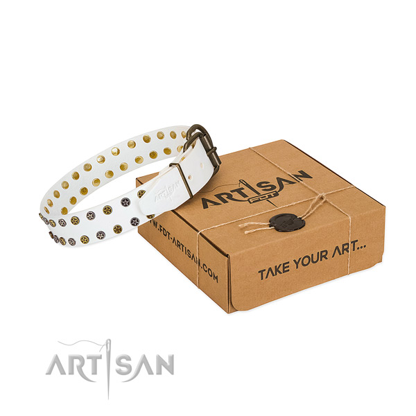 Impressive full grain leather dog collar with reliable studs