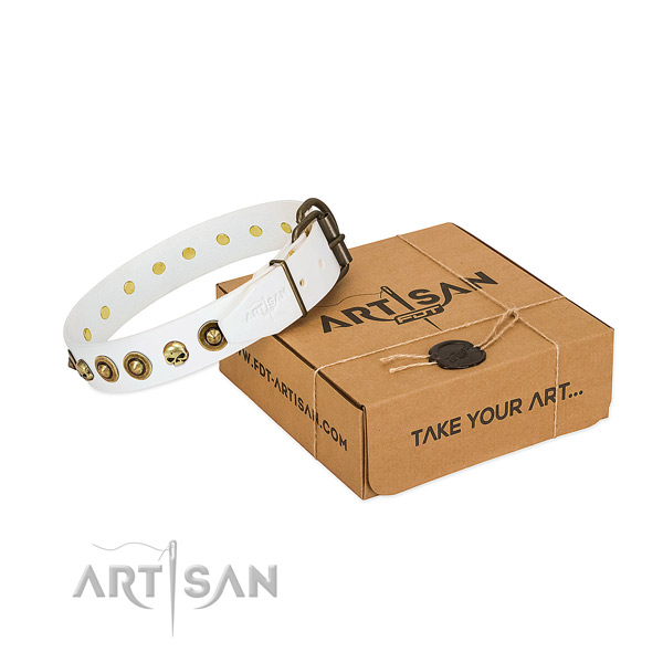 Natural leather collar with stylish design studs for your canine