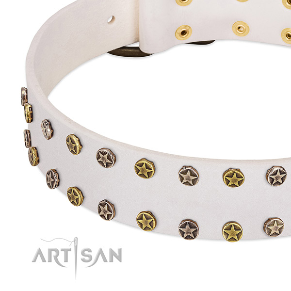 Stylish studs on natural leather collar for your dog