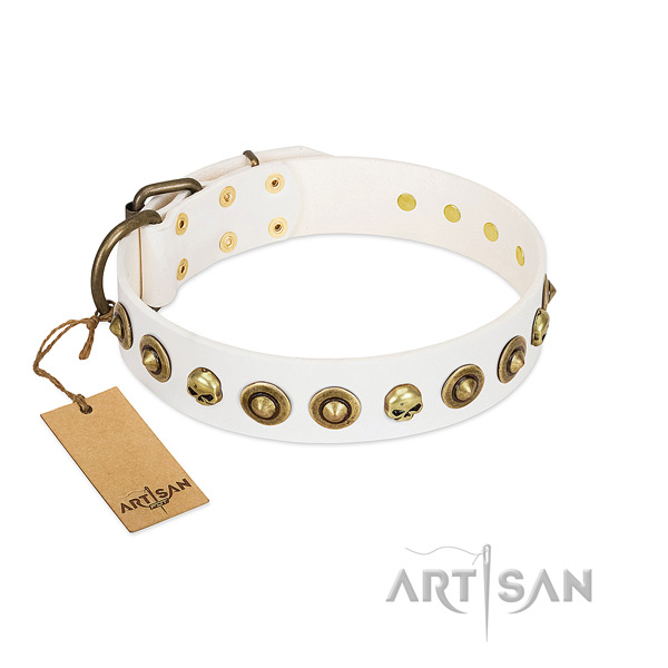 Leather collar with unusual embellishments for your doggie