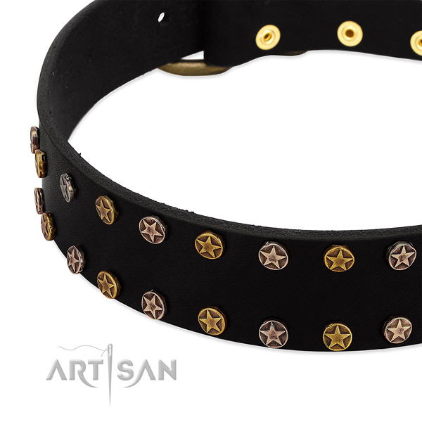 Exceptional embellishments on leather collar for your four-legged friend