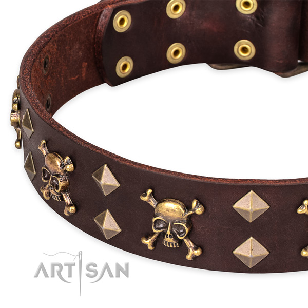 Fancy walking studded dog collar of fine quality full grain natural leather