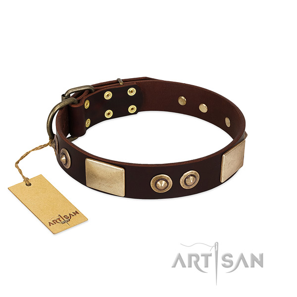 Adjustable leather dog collar for stylish walking your canine