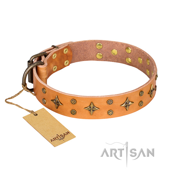 Comfy wearing dog collar of finest quality full grain genuine leather with studs