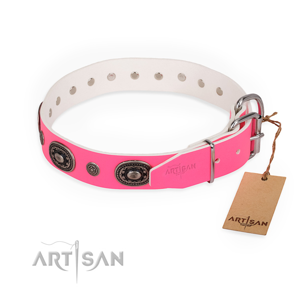 Stylish walking perfect fit dog collar with reliable fittings