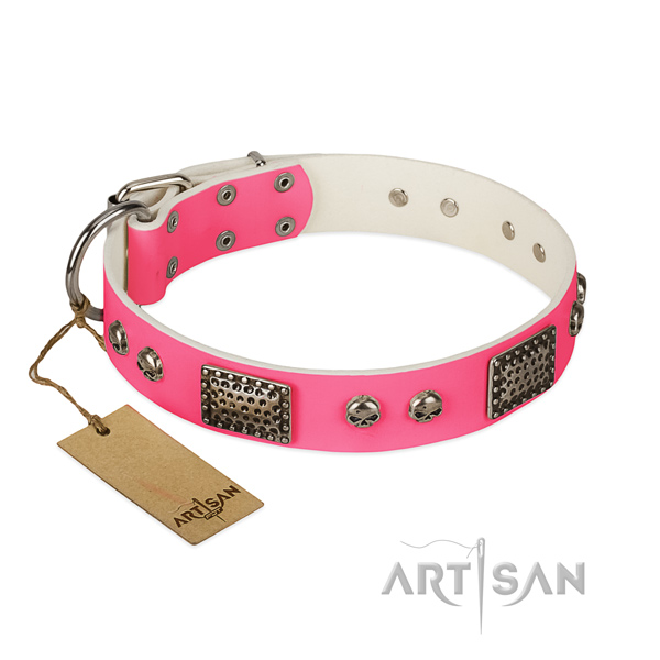 Easy adjustable natural leather dog collar for walking your canine