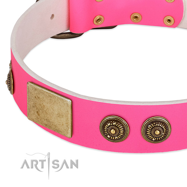 Easy wearing dog collar crafted for your lovely dog