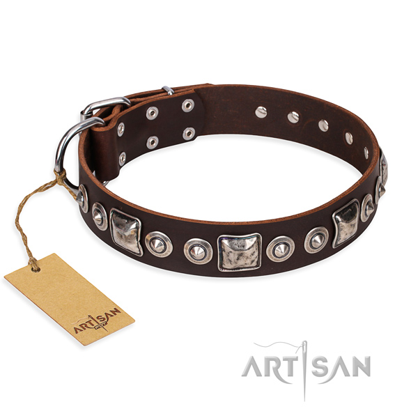 Leather dog collar made of reliable material with durable fittings