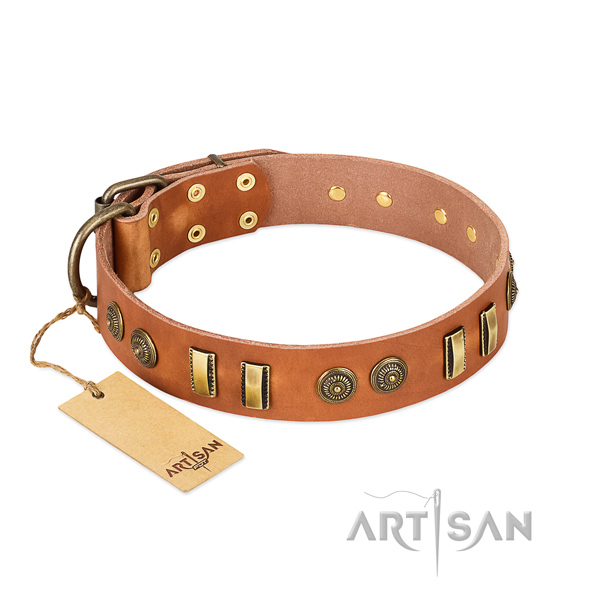 Rust resistant adornments on natural leather dog collar for your pet