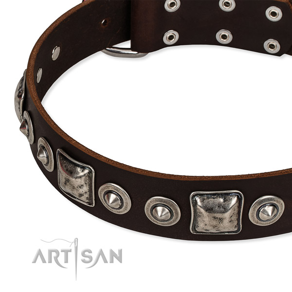 Full grain natural leather dog collar made of top notch material with decorations