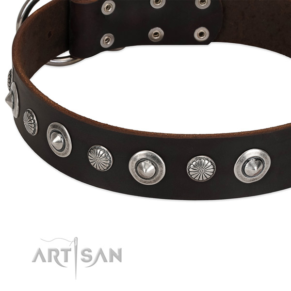 Significant decorated dog collar of reliable leather