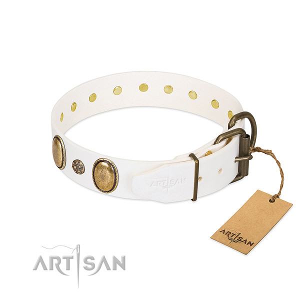 Daily walking soft to touch full grain leather dog collar