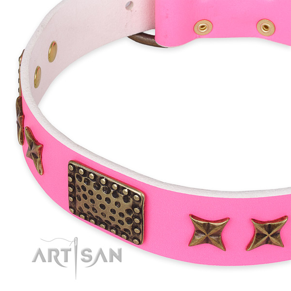 Leather collar with rust-proof buckle for your attractive pet